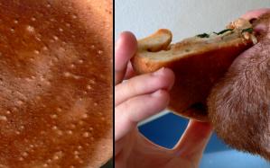 6-crust